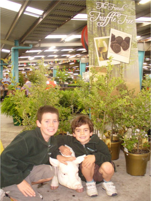 18 Kyle and Ryan with Truffle Trees.jpg