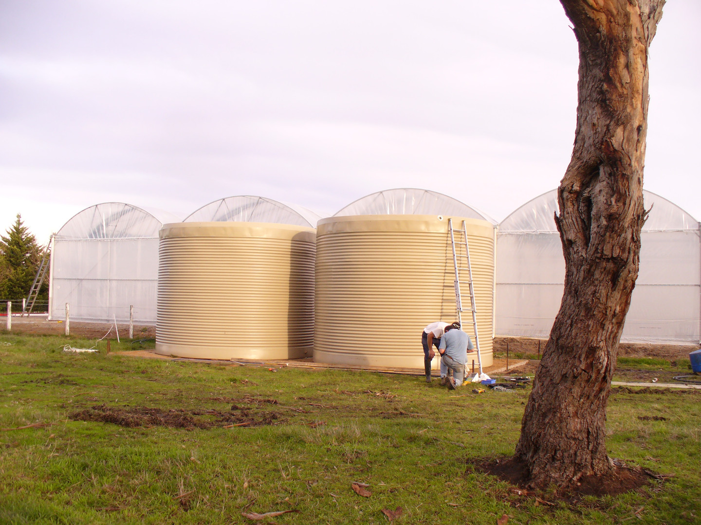 Our 2 x 50,000 litre water tanks are finally in position.  Now to plumb them up and wait for rain!