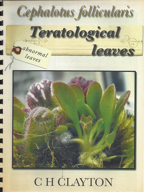 Cephalotus follicularis - Teratological leaves