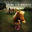 Gaelic Storm (Wellies).PNG