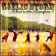 Gaelic Storm (Rumpus).PNG