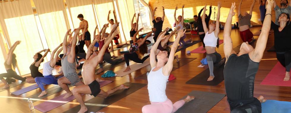 yoga la yoga_ babakamp.jpg