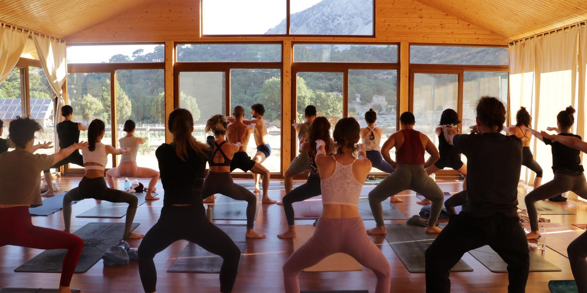 yoga la yoga_ babakamp