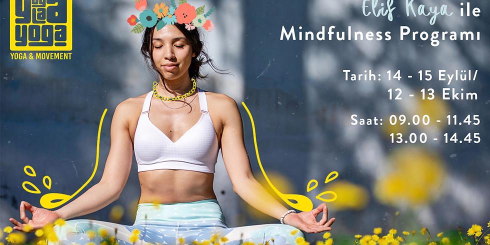Elif Kaya İle Mindfulness Programı