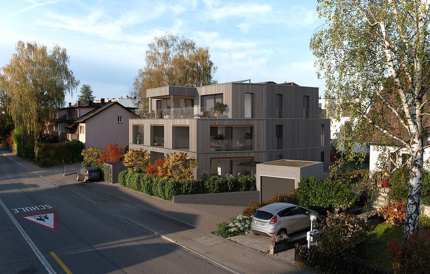 9118-Montesole Dübendorf_A1_F1_Cropb.jpg