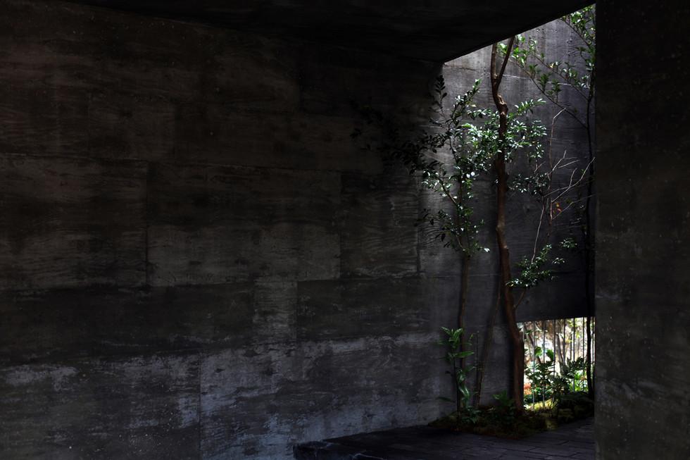 12 光洞の家