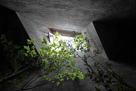 20 光洞の家