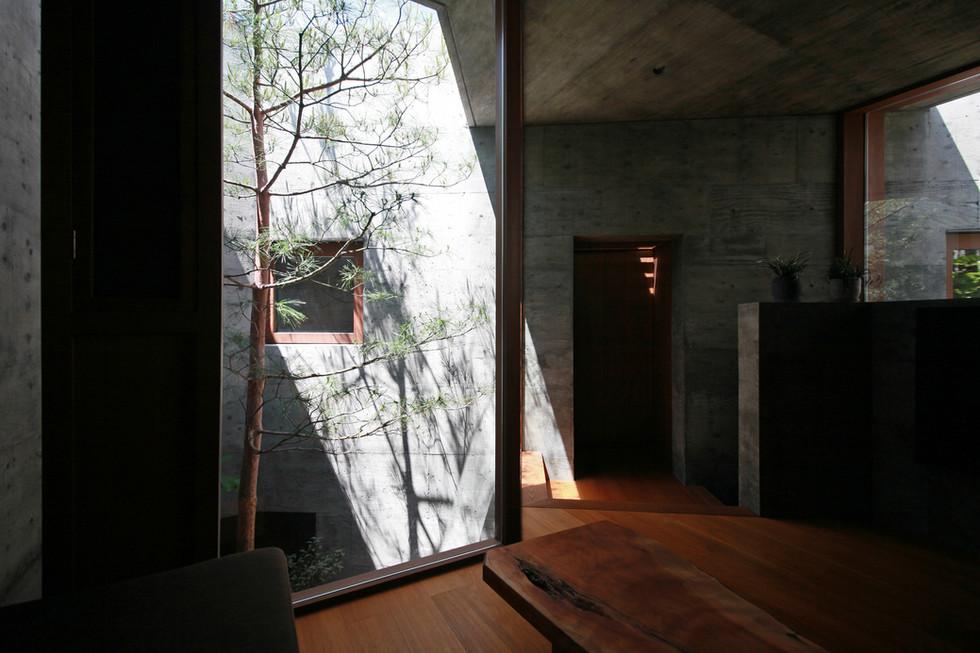 32 光洞の家