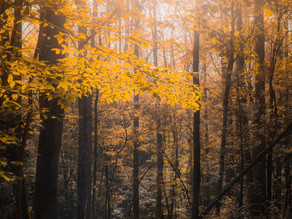 5 benefits of getting outdoors