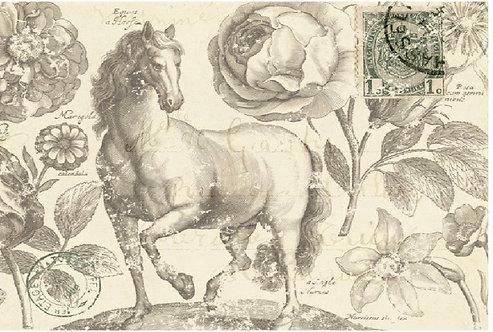 Botanical Equine