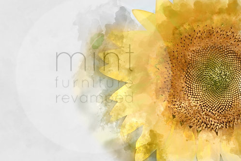 Sunflower A-1  22x24