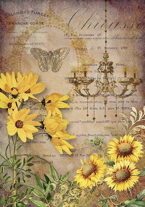 Elegant Sunflowers