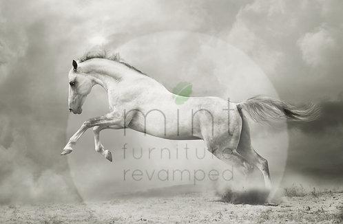 White Horse  A-1  24x34