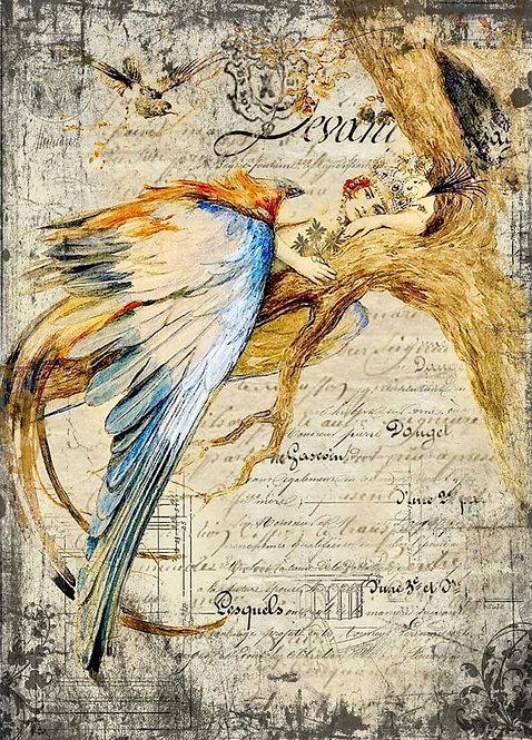 Bluebird Queen XL