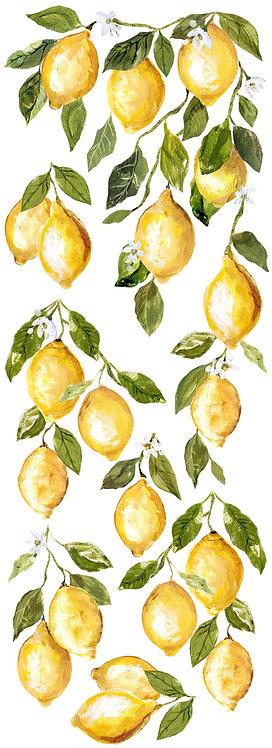 Lemon Drops 12x33 Transfer