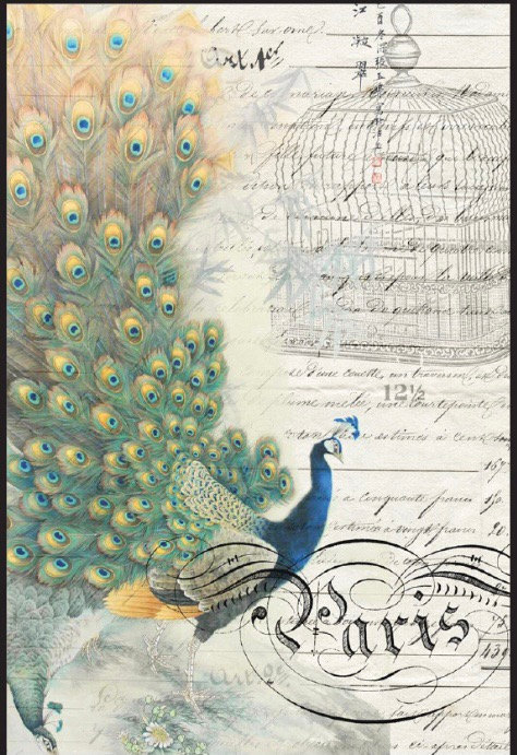 Peacock Ephemera  Left