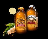 brew-ginger-beer-US.png