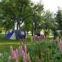 camping info  3.jpg