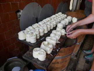 Slovak sheep cheese rolls