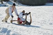 Slovak traditional sledges