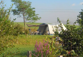 Furnished Tent.jpg