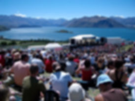 rippon crowd email pic.jpg