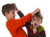 العنف المدرسي، الأسباب، العواقب، الحلول