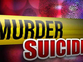 جرائم القتل الاسرية المرتبطة بانتحار القاتل، على من تقع مسؤولية الوقاية من العنف؟