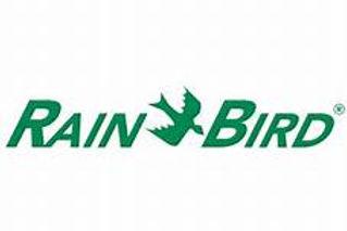 rainbird.jpg