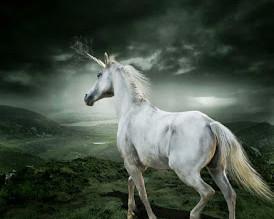 Molly's Unicorn