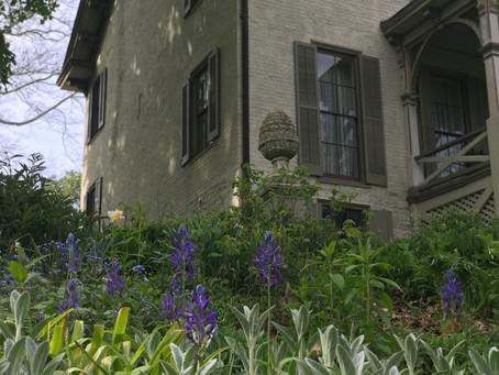 #1 Front Parlor Garden