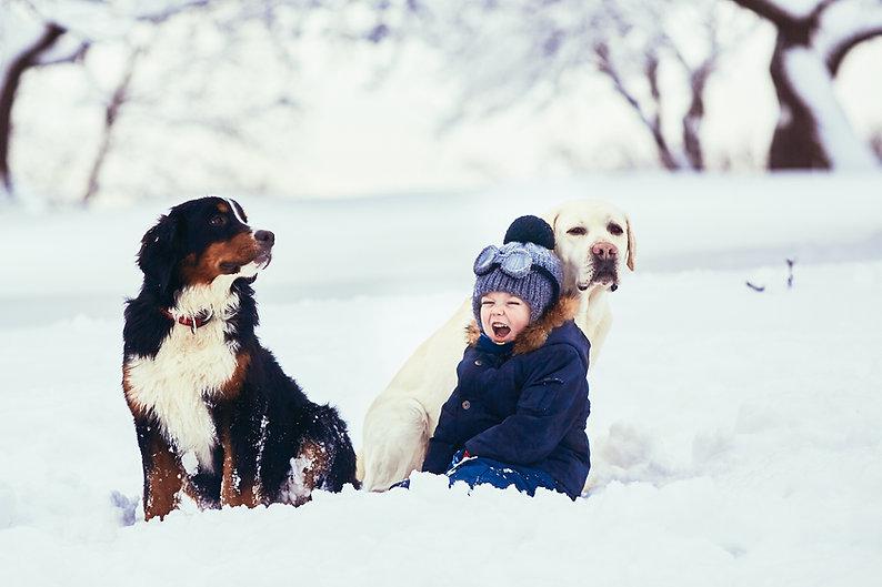 small-boy-dogs-sitting-snow.jpg