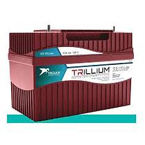 Trojan Trillium by Inborn Energy.png