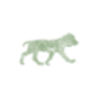 BB_Dog_Icon_Large.png