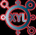 XYL-MOLECULE-I.png