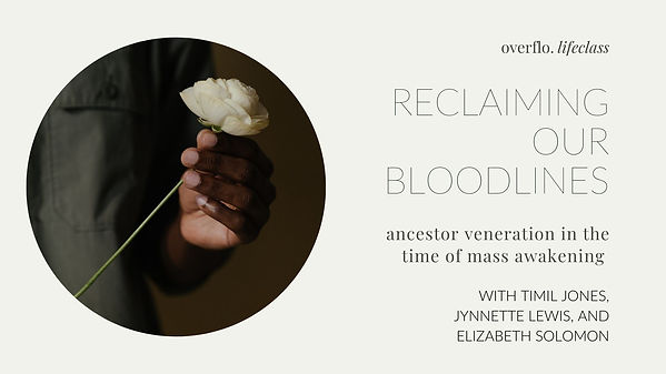reclaiming our bloodlines final  slides.