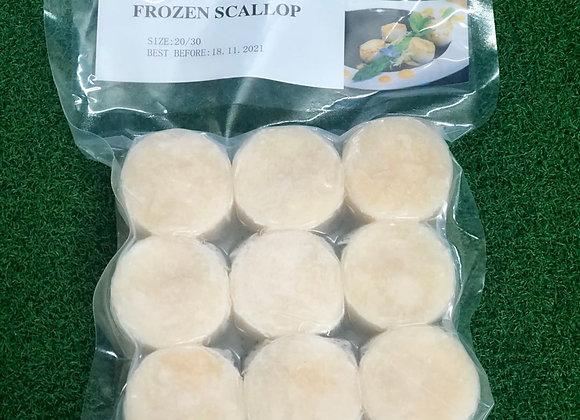 SCALLOP BASE 日本带子饼 20-30