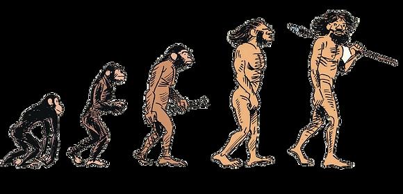 Hình loài người người tiến hóa