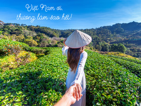 Review Sách – Việt Nam Ơi, Thương Làm Sao Hết!