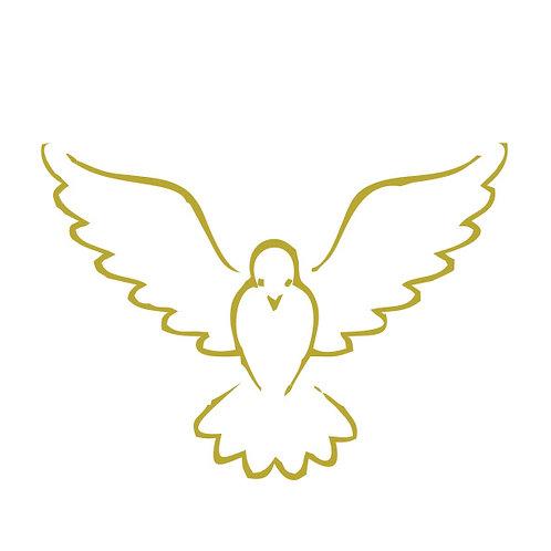TS 0008 Espírito Santo