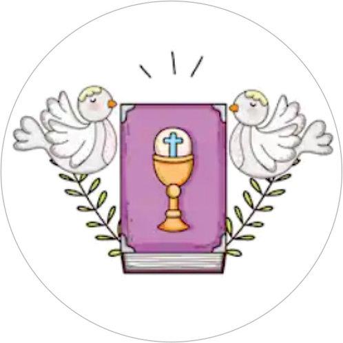 Batizado TS00202