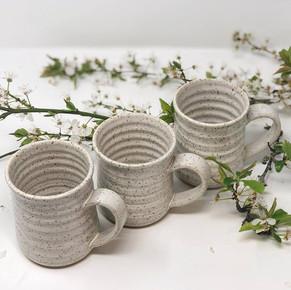 3 Oatmeal Mugs