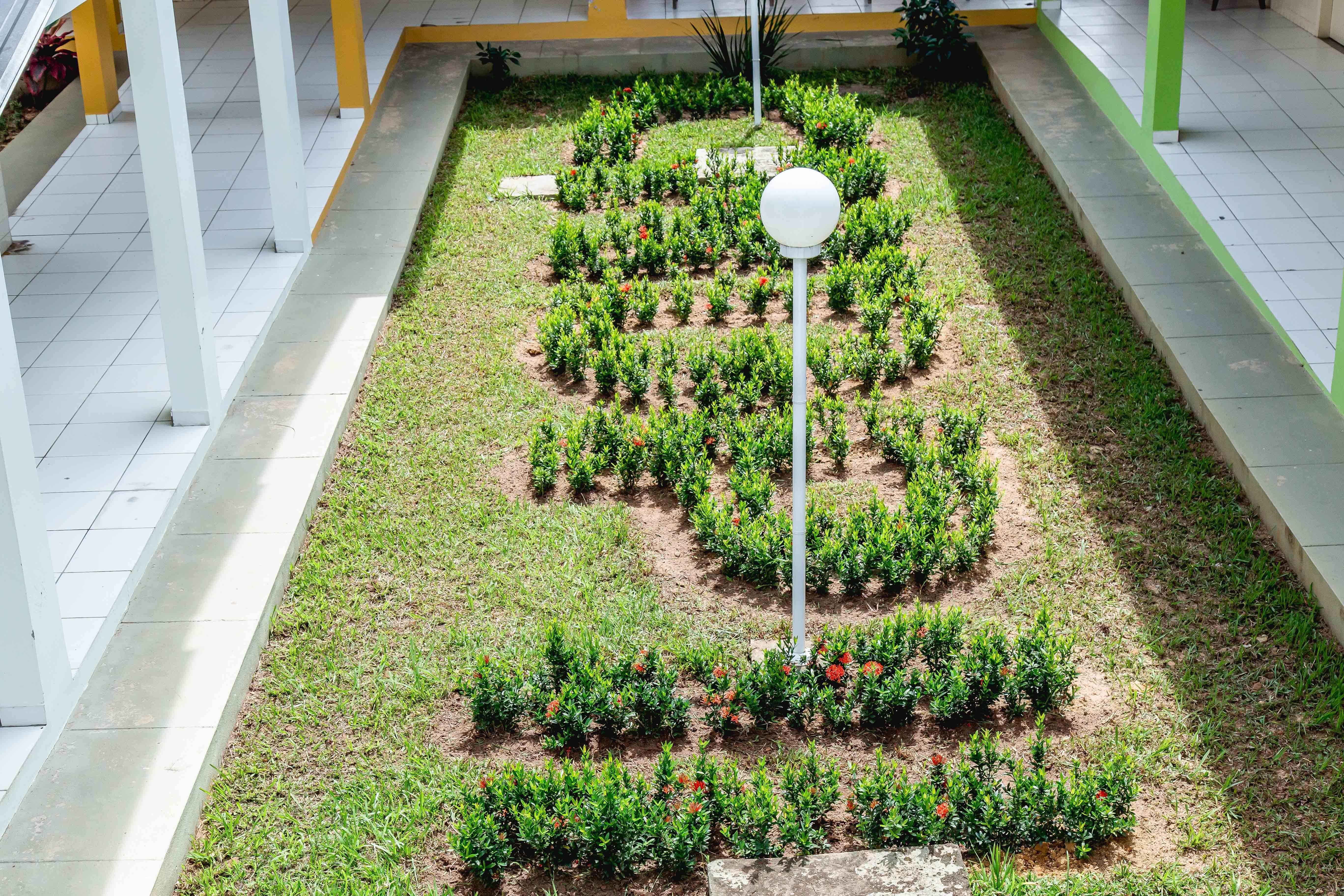 Abreviação do nome do Colégio feito com plantas.