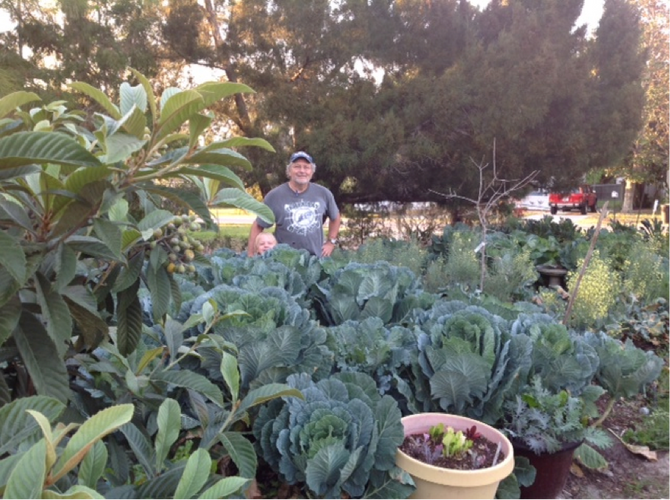 Community Support Agriculture Opportunity in West Pasco