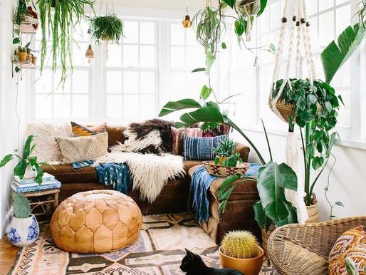 Idées déco : comment mettre en valeur  vos plantes d'intérieur ?