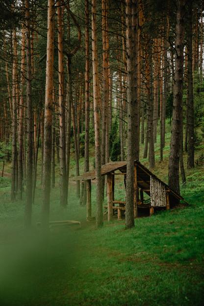 Asalnų stovyklavietė - pavėsinė
