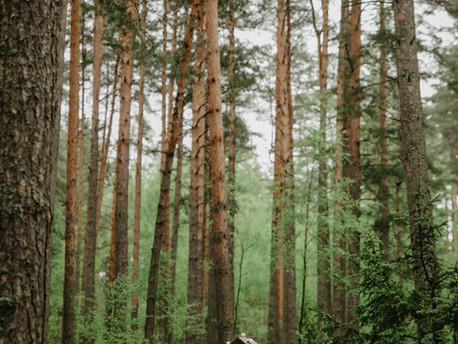 Asalnų stovyklavietė - įkvėpti gamtos