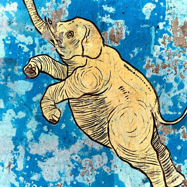 elefant in the skywall jpeg_edited.jpg