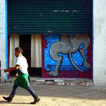 graffitti perro REC editado.jpg