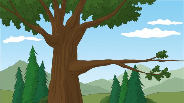 BB_101_B_EXT_Tree_WithBirdsNest_Color_02.jpg